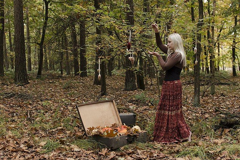 Autumn-Luggage-001.jpg